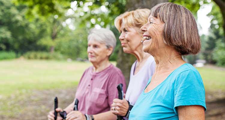 3.000 Schritte gegen Demenz