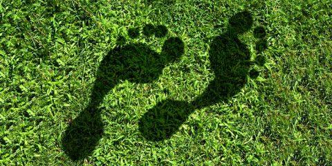 Der Umwelt zuliebe: 7 nachhaltige Tipps für den Alltag!